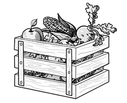 crate plus veggies small