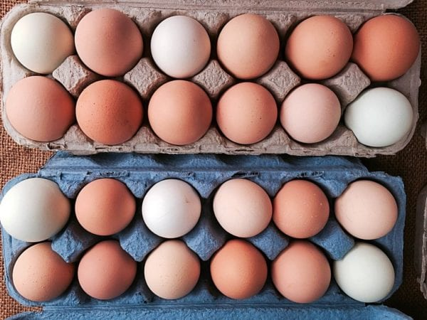 Organic Fruits and Vegetables - Farm Fresh Eggs