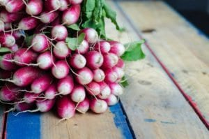 this week's harvest - Radish