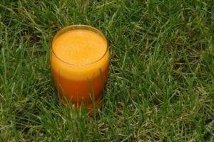 Carrot Kale Green Juice
