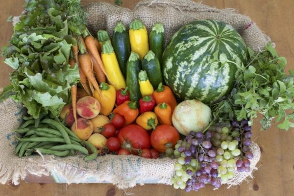 Farmer's Choice - Organic Fruits and Vegetables