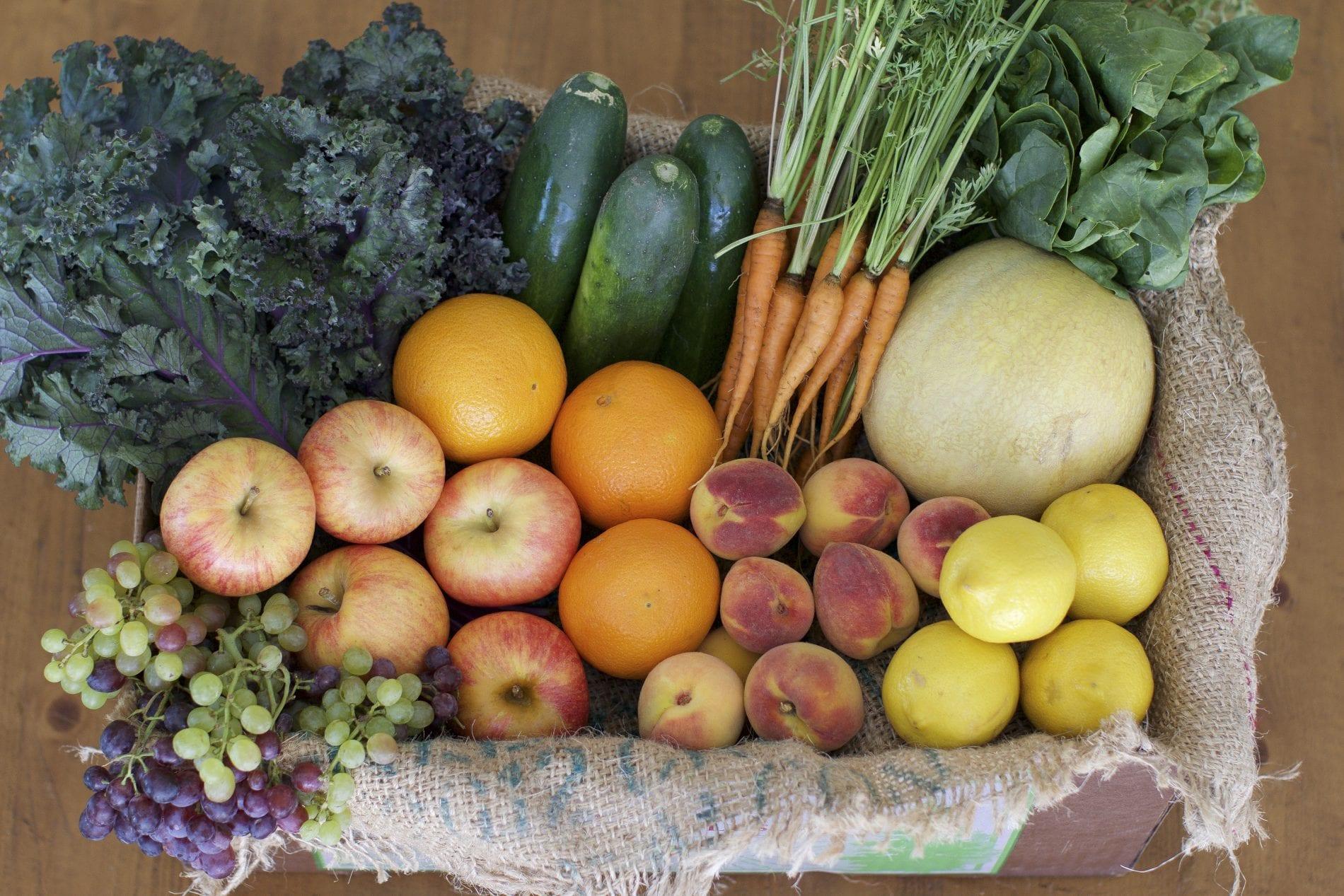 Fruit Juicer Harvest [218869]