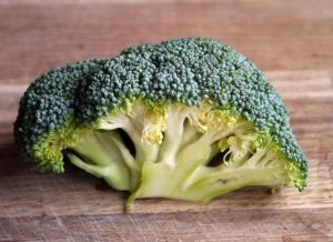 in this week's harvest-Broccoli