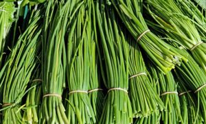 in this week's harvest-Chives