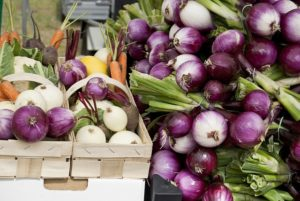 this week's harvest-Red Onion