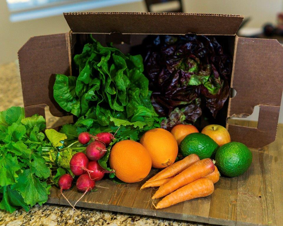get the most out of your harvest box