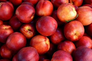 this week's harvest-Nectarines