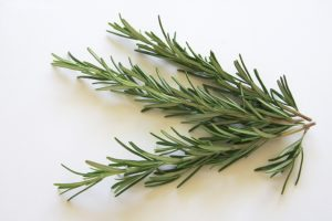 this week's harvest-rosemary