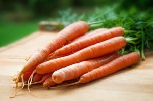 in this week's harvest - Carrots