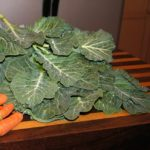this weeks organic harvest carrots collard greens