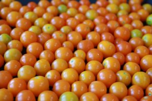 in this week's harvest-Cherry Tomatoes