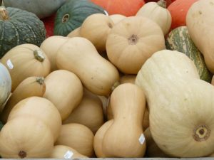 in this week's harvest-Butternut