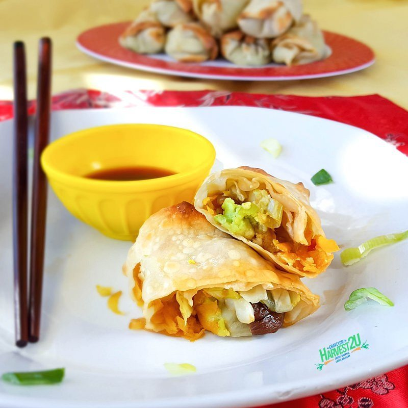 baked avocado and vegetable egg rolls