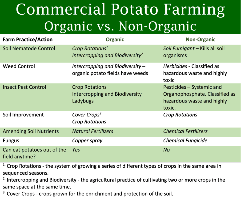 commercial potato farming organic vs. non-organic - infographic