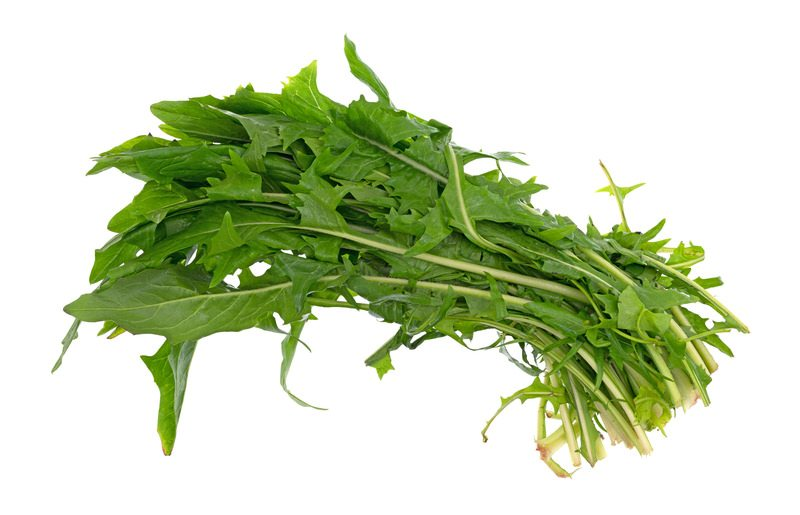 in this week's harvest-Dandelion