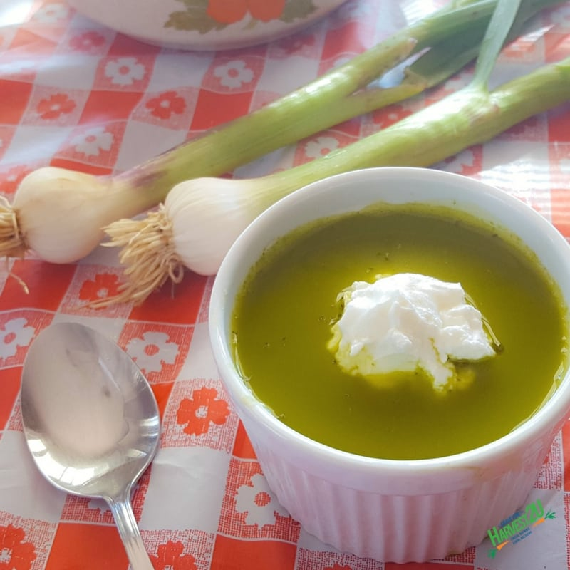 Spring Garlic Kale Soup
