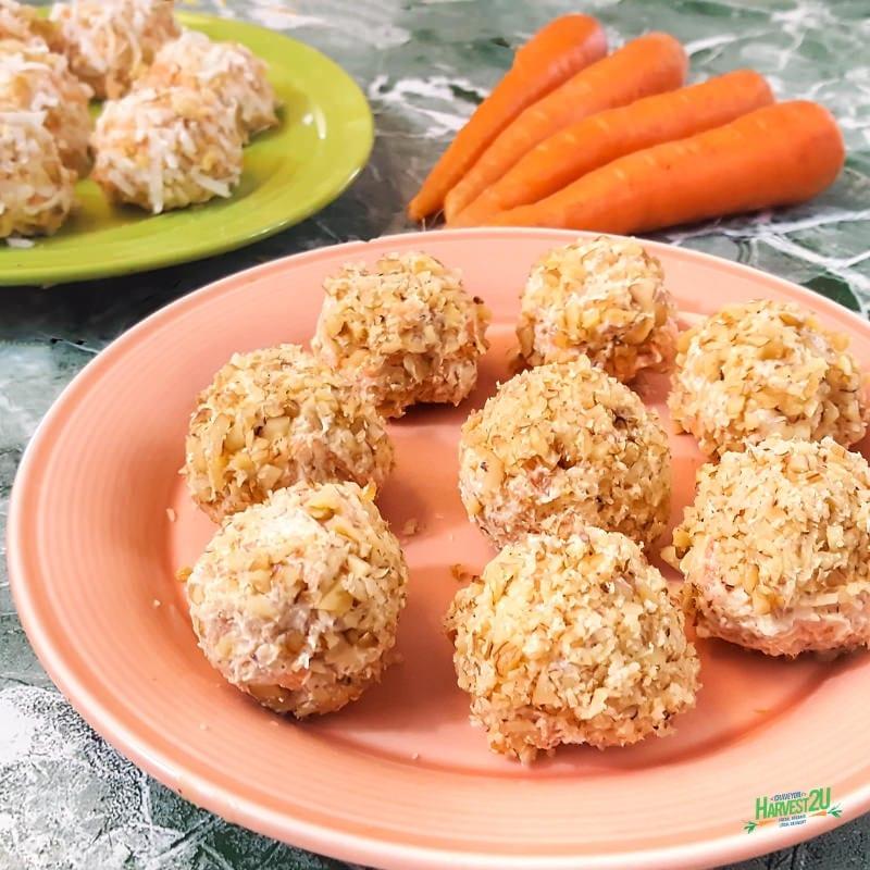 Low Carb Carrot Balls