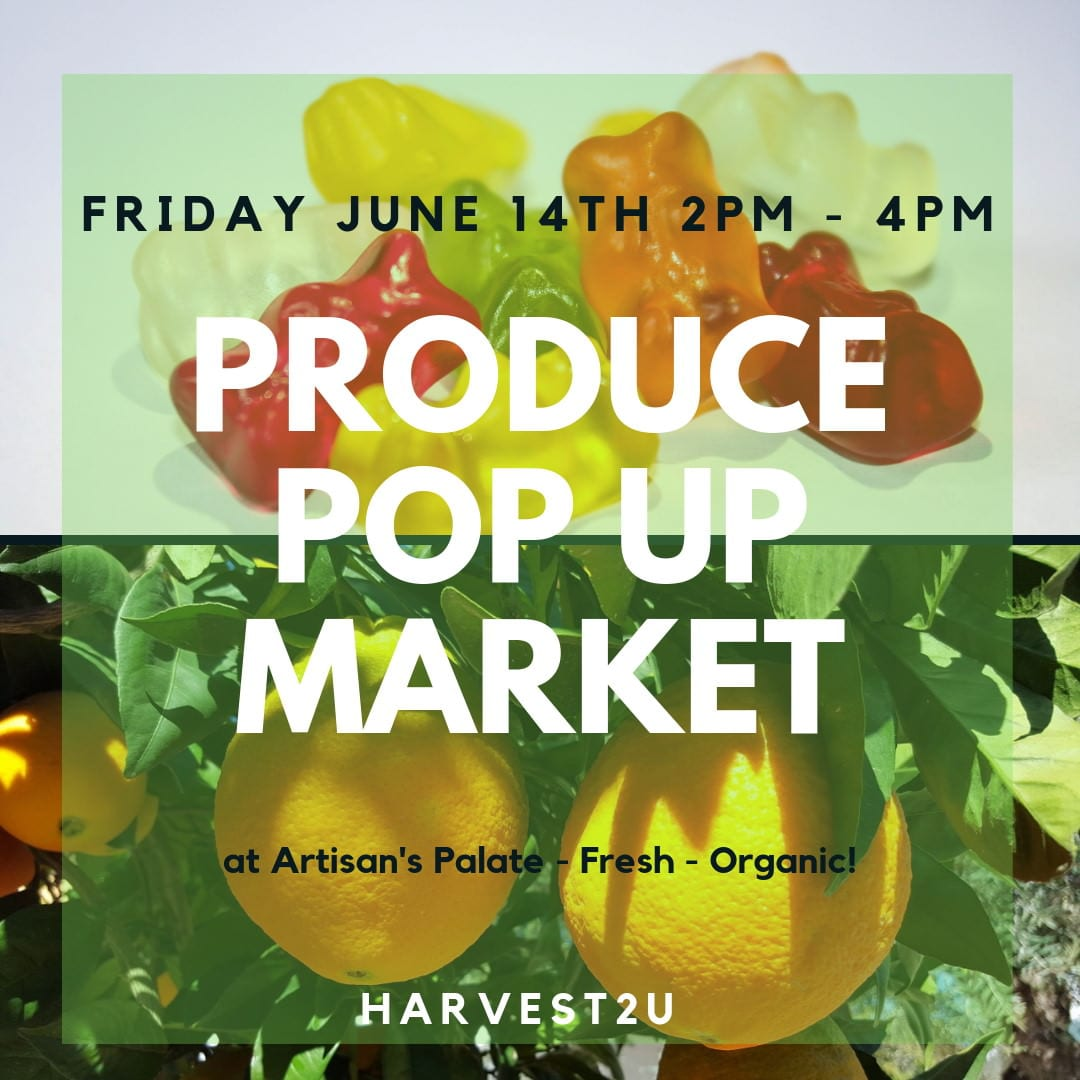 produce pop up market
