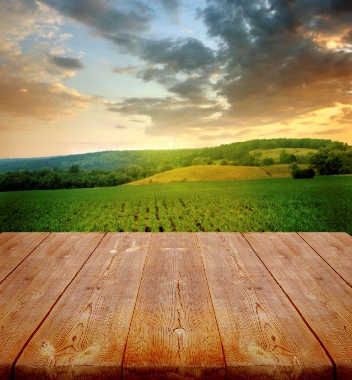 organic farm field