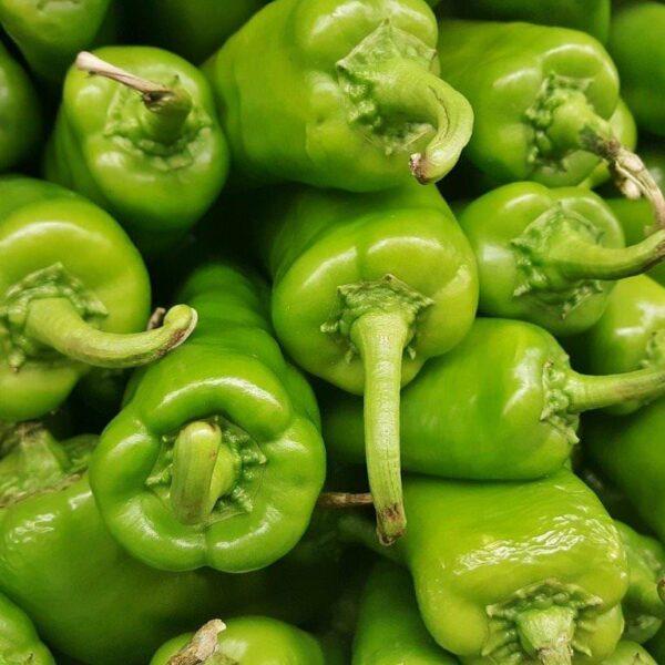 anaheim peppers