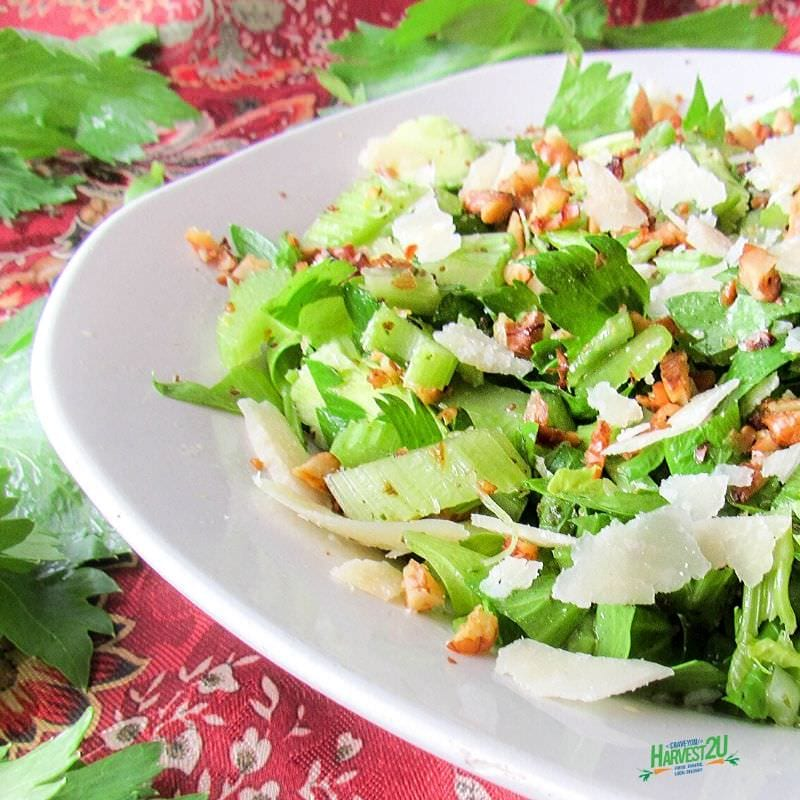 celery walnut salad