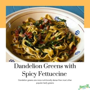 Dandelion Greens with Spicy Fettuccine