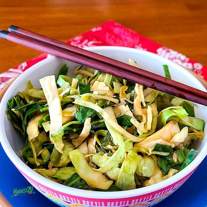 Japanese pickled cabbage