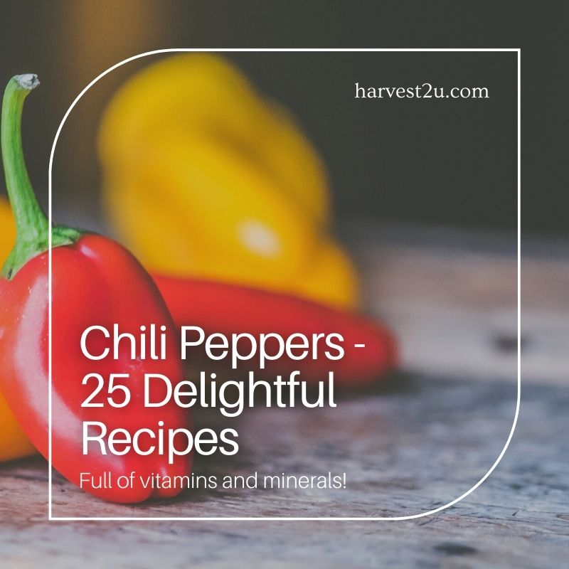 25 chili peppers recipes