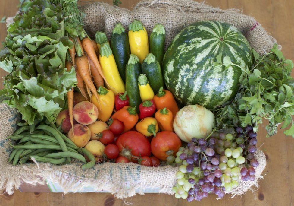 ten tips harvest